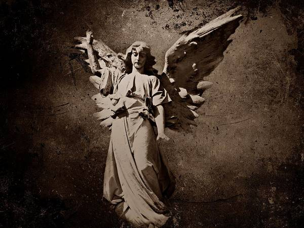 Photograph - Angel Of Death S by David Dehner