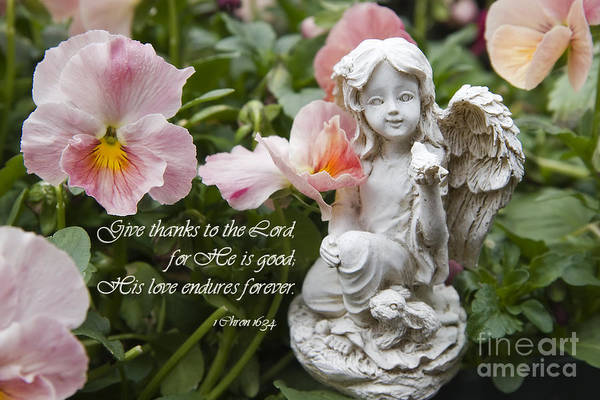 Photograph - Angel Statue With Scripture by Jill Lang