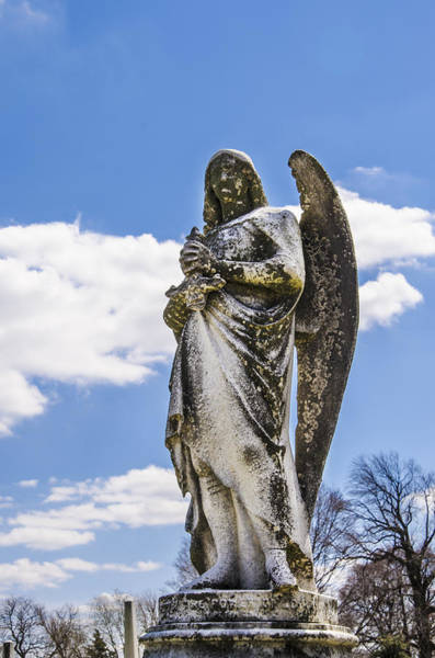 Photograph - Angel With A Dirty Face by Bill Cannon