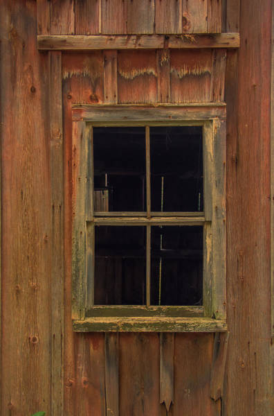 Photograph - Angelica Barn Window II by Guy Whiteley
