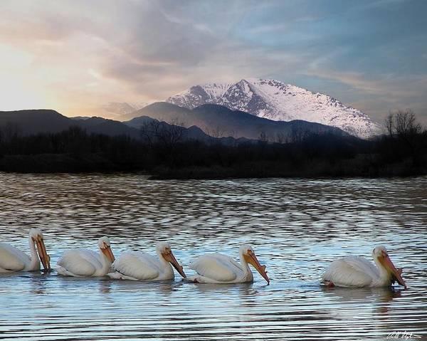 Colorado Wildlife Digital Art - Angels Fishing by Bill Stephens