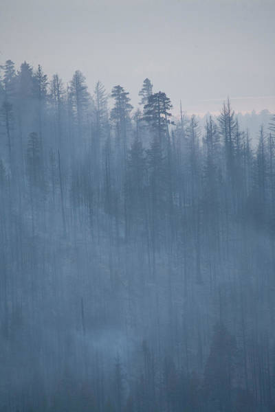 Wall Art - Photograph - Angora Fire In South Lake Tahoe, Ca by Justin Bailie