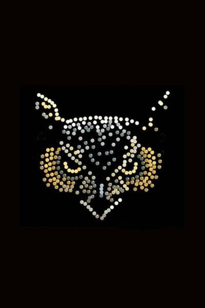 Digital Art - Angry Owl Bedazzled  by R  Allen Swezey