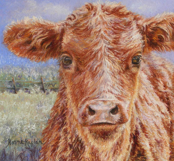 Painting - Angus Calf Norman IIi by Denise Horne-Kaplan