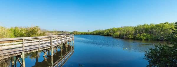 Anhinga Photograph - Anhinga Trail Boardwalk, Everglades by Panoramic Images