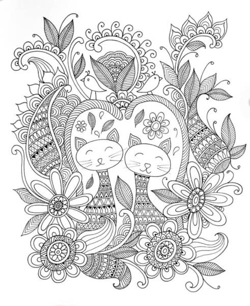 Colours Drawing - Animal Cats by MGL Meiklejohn Graphics Licensing