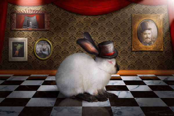 Checker Photograph - Animal - The Rabbit by Mike Savad