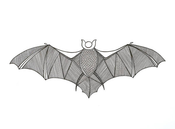 Intricate Drawing - Animals Bat by MGL Meiklejohn Graphics Licensing