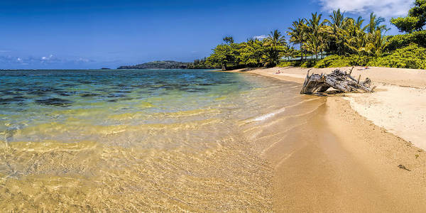 Photograph - Anini Beach 1 by Gordon Engebretson