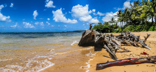 Photograph - Anini Beach 4 by Gordon Engebretson