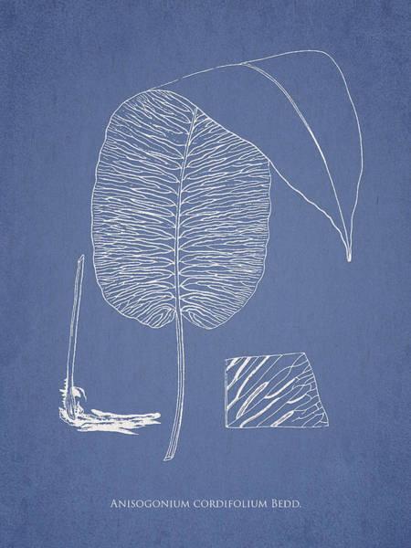 Ferns Digital Art - Anisogonium Cordifolium by Aged Pixel