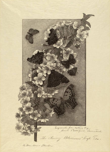 Wall Art - Drawing - Anna Botsford Comstock, The Cherry Blossoms - High Tea by Quint Lox