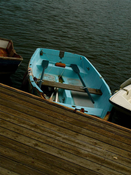 Photograph - Annapolis Harbor by Gia Marie Houck