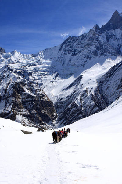 Photograph - Annapurna Sanctuary Trail by Aidan Moran