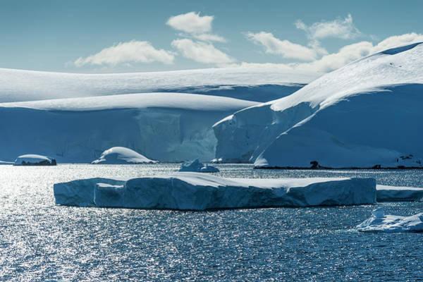 Wall Art - Photograph - Antarctic Ice  Antarctica by Deb Garside