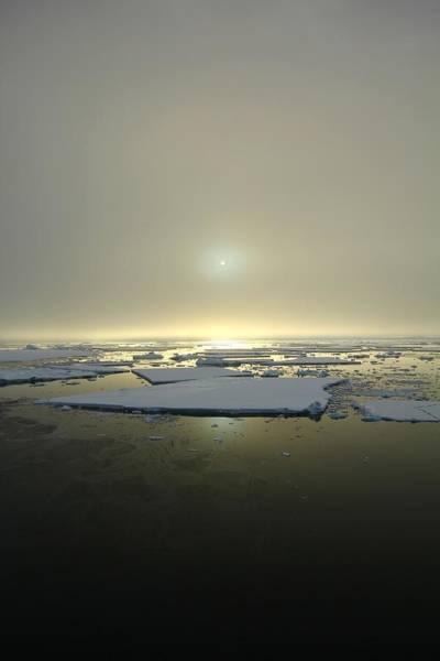 Wall Art - Photograph - Antarctic Misty Sunset by FireFlux Studios