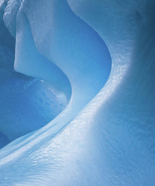 Wall Art - Photograph - Antarctica, Blue Ice, Fine Art, Close-up by George Theodore