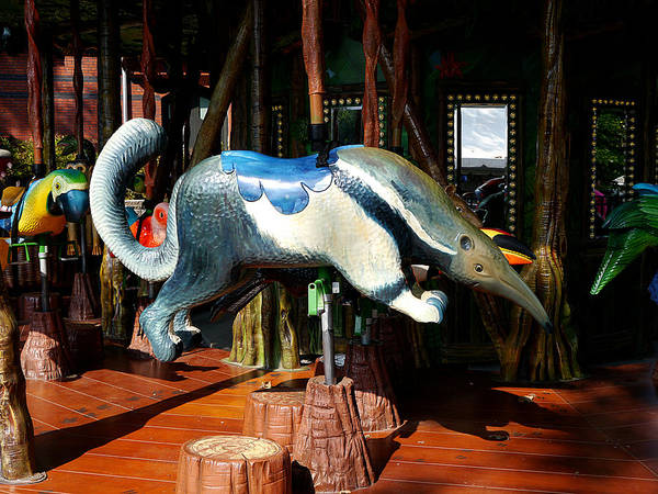 Photograph - Anteater Ride by Richard Reeve
