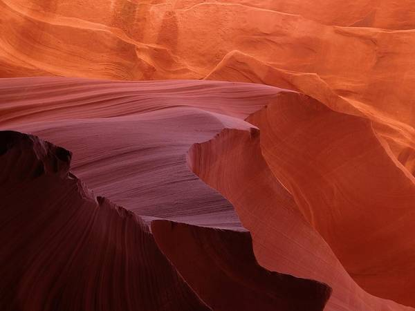 Photograph - Antelope Canyon Wave by Keith Stokes