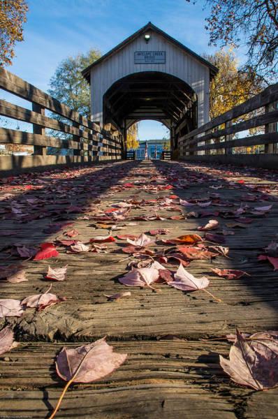 Rogue Valley Photograph - Antelope Creek Bridge by Mick Anderson
