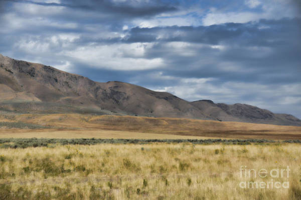 Photograph - Antelope Island Camera Flats by Donna Greene