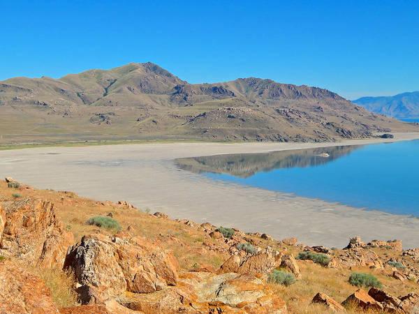 Photograph - Antelope Island by Dan Miller