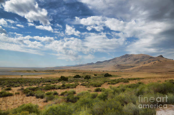 Photograph - Antelope Island Park Utah by Donna Greene