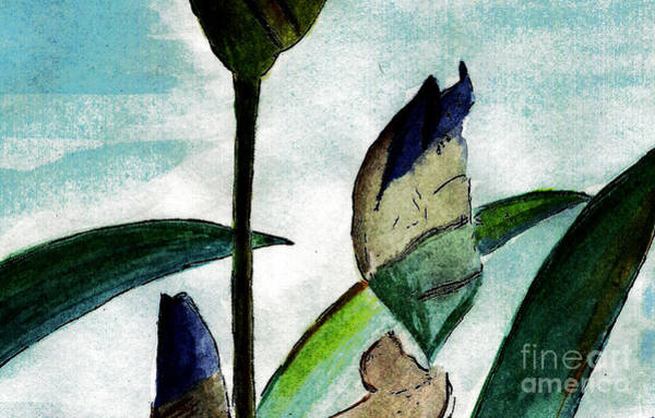 Meadowlands Painting - Anticipation by Elizabeth Briggs