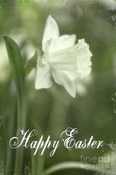 Photograph - Anticipation - Happy Easter by Beve Brown-Clark Photography
