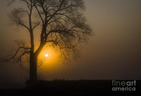 Photograph - Antietam Morning by Ronald Lutz