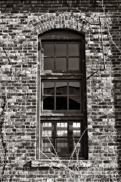 Photograph - Antique Factory Window by Olivier Le Queinec