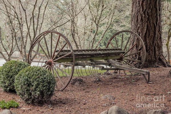 Hay Rake Photograph - Antique Hay Rake 2 by Lucid Mood