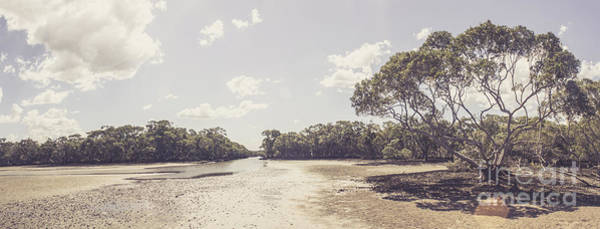 Qld Photograph - Antique Mangrove Landscape by Jorgo Photography - Wall Art Gallery