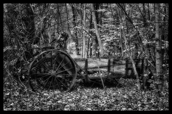 Photograph - Antique Manure Spreader In The Forest by Jeff Sinon