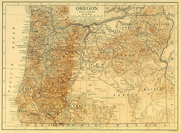 Collectible Art Drawing - Antique Map Of Oregon 1911 by Mountain Dreams