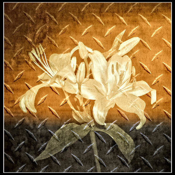Photograph - Antique Metallic Flowers by Carolyn Marshall