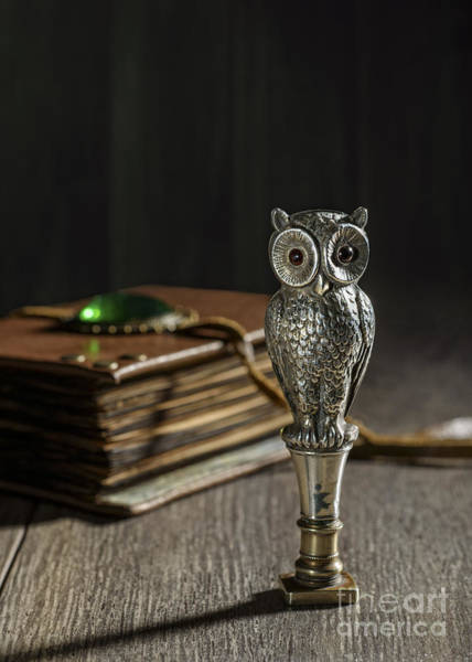Seal Photograph - Antique Owl Seal by Amanda Elwell