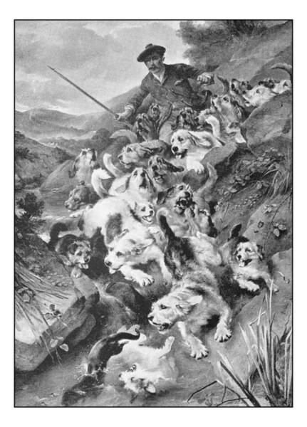 Antique Photo Of Paintings: Bolting The Otter Art Print by Ilbusca