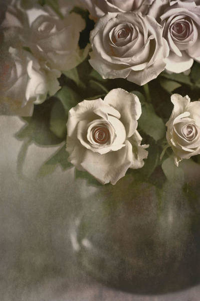 Photograph - Antique Roses by Annie Snel
