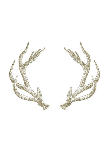 Deer Wall Art - Digital Art - Antlers by Randoms Print
