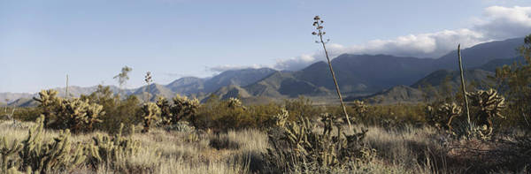 Wall Art - Photograph - Anza Borrego Desert, California by Joseph Sohm