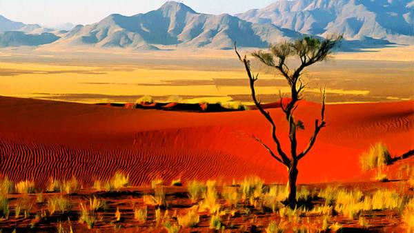 Photograph - Anza Borrego Desert Southern California by Bob and Nadine Johnston