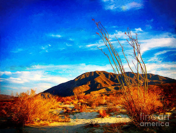 Digital Art - Anza Borrego Octillio Cactus by Bob and Nadine Johnston