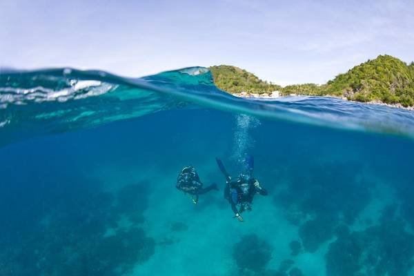 Wall Art - Photograph - Apo Island Marine Park Negros Oriental by Stuart Westmorland