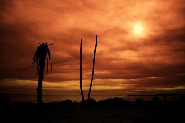Apocalypse Nowish Art Print