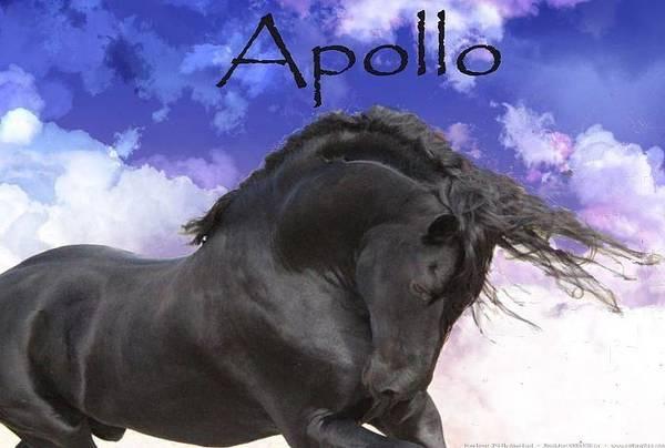 Apollo The Great Art Print