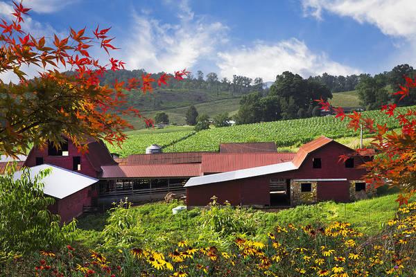 Wall Art - Photograph - Appalachian Dairy Farm by Debra and Dave Vanderlaan