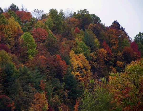 Digital Art - Appalachian Mountain Fall by Chris Flees