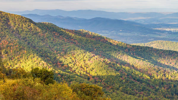 Photograph - Appalachian Mountains In Shenandoah National Park  by Pierre Leclerc Photography