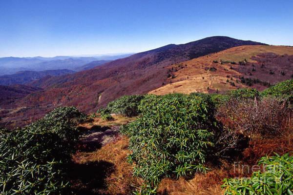 Photograph - Appalachian Trail From Jane Bald by Thomas R Fletcher